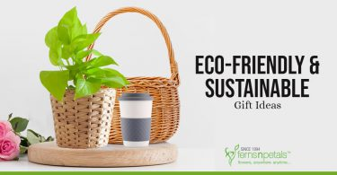 7 Eco-Friendly & Sustainable Gift Ideas