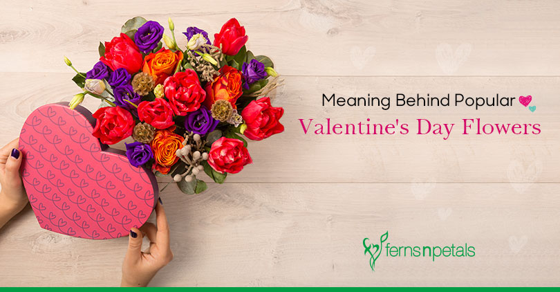 Know the Meaning Behind Popular Valentine's Day Flowers