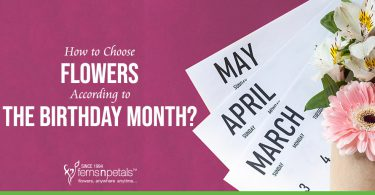 How to Choose Flowers According to the Birthday Month?
