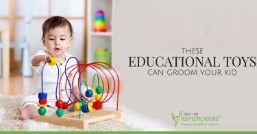 These Educational Toys can Groom Your Kid