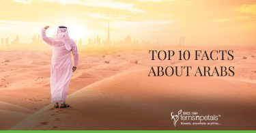 Top 10 Facts About Arabs