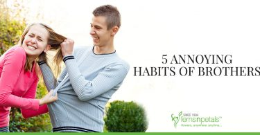5 annoying habits of brothers